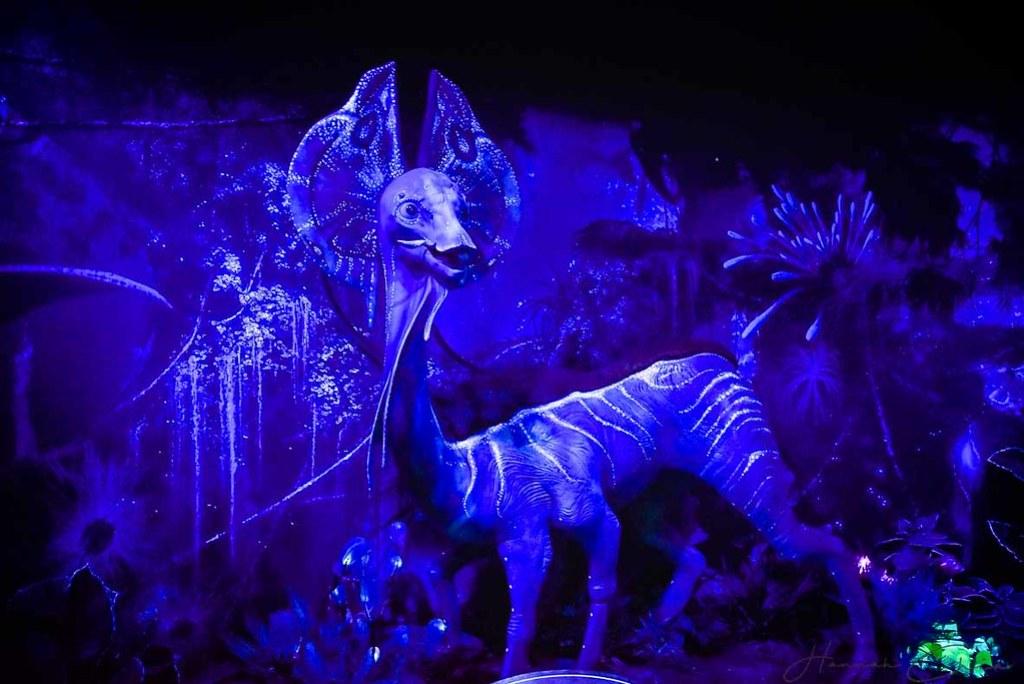 Avatar- Discover Pandora (43 of 71)