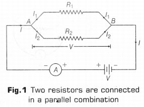 cbse-class-10-science-lab-manual-resistors-parallel-1