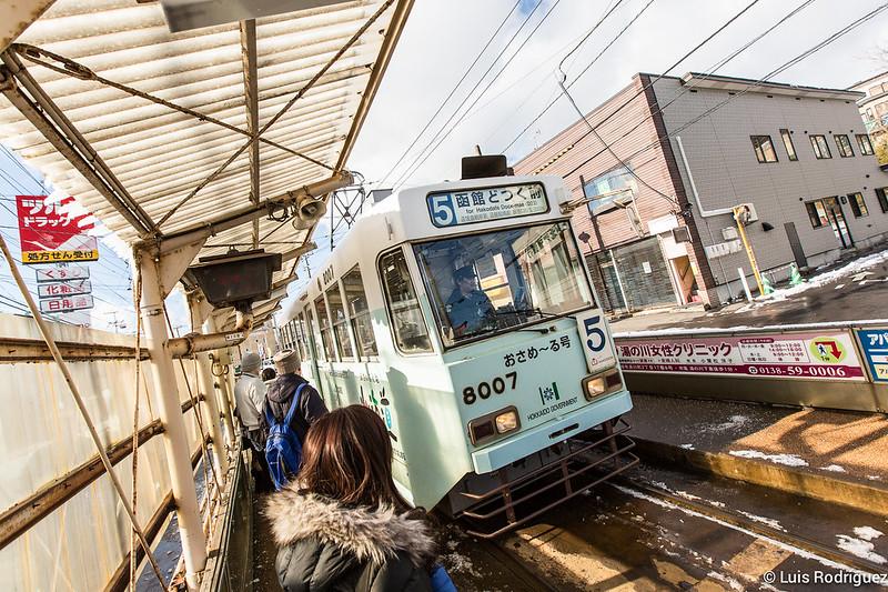 Paseo-Hakodate-100