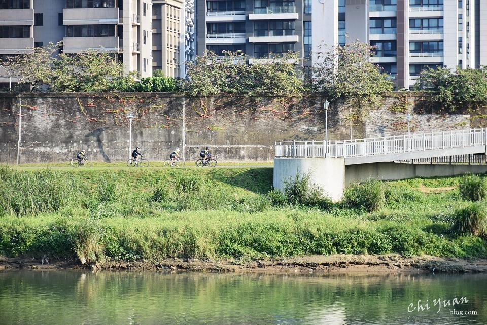 基隆河畔自行車道19.JPG