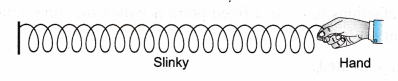 ncert-class-9-science-lab-manual-velocity-of-a-pulse-in-slinky-9