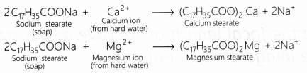 cbse-class-10-science-lab-manual-cleaning-capacity-soap-hard-soft-water-6