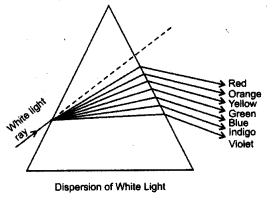 ncert-solutions-for-class-8-science-light-6