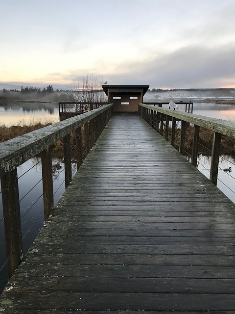 Buttle Lake - Campbell river walk