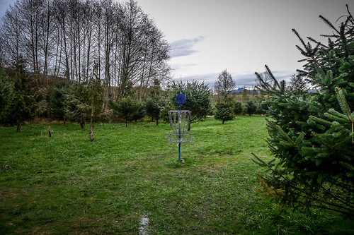 Northern State Recreation Area Disc Golf-006