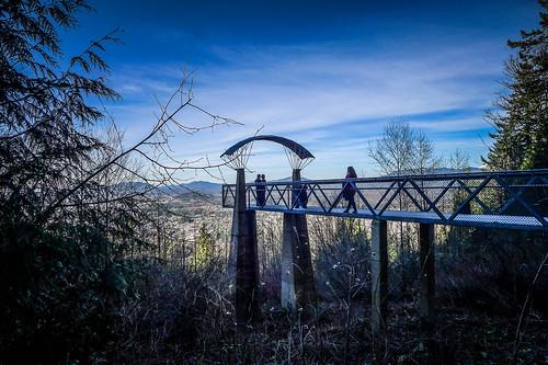 Little Mountain Park Vistas-004