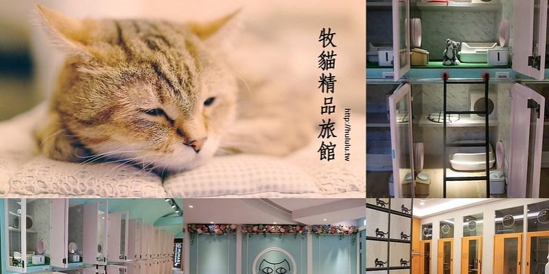 台南貓旅館 主人們放心去旅行吧!結合貓醫生,美容,鮮食的寵物旅館。寶貝貓咪也能有個舒適的空間~「牧貓精品寵物旅館」|文末分享送實木貓碗架|