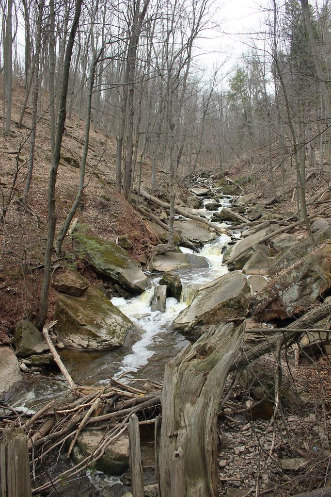 Smokey Hollow Bruce Trail