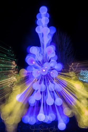 O Christmas Tree by Jeanie Sumrall-Ajero