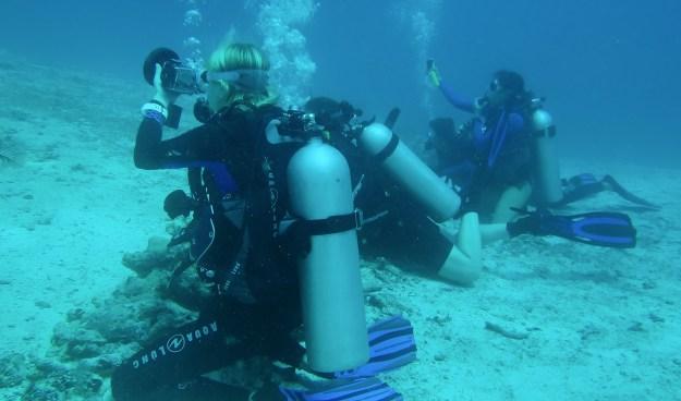 Divers at Manta Sandy
