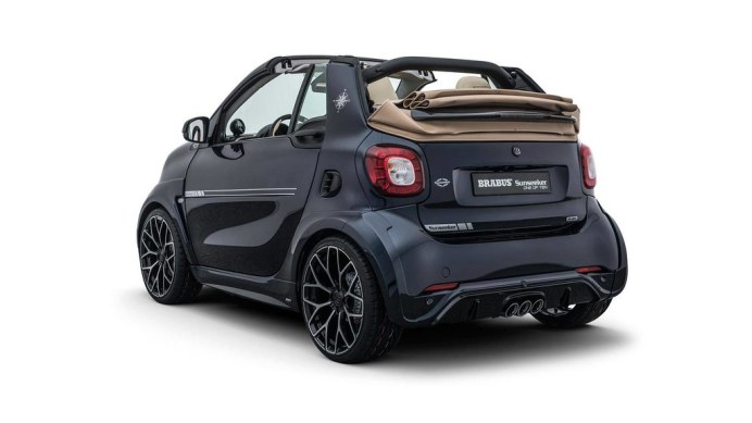 brabus-smart-fortwo-sunseeker (2)