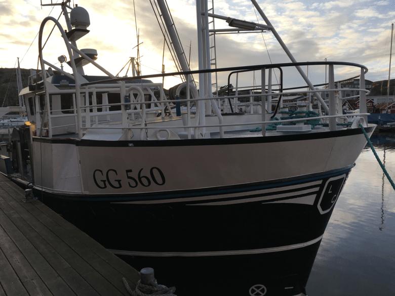 GG_560_osprey_jan_2017 - 5