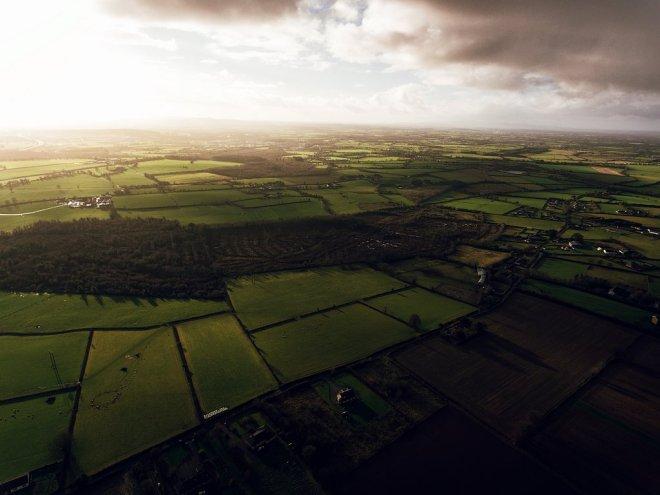 agriculture-indigo-2018