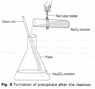 cbse-class-10-science-lab-manual-types-of-reactions-3