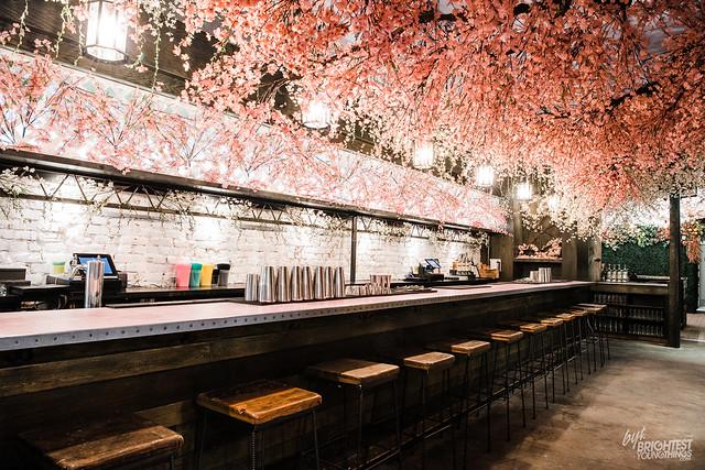 Cherry Blossom PUB-9