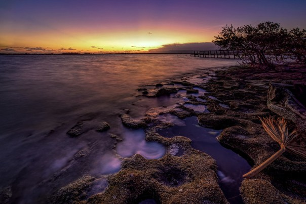 Cochina dawn