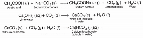 CBSE Class 10 Science Lab Manual - Properties of Acetic Acid - A Plus Topper
