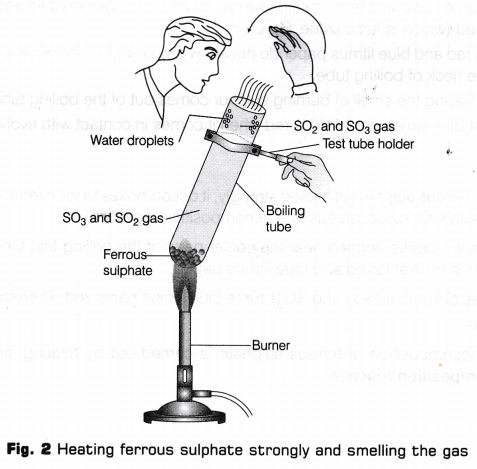 cbse-class-10-science-lab-manual-types-of-reactions-4