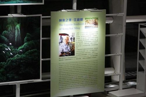 Artwork by Kong Kai Ming on display