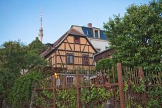 Freytags Weingarten