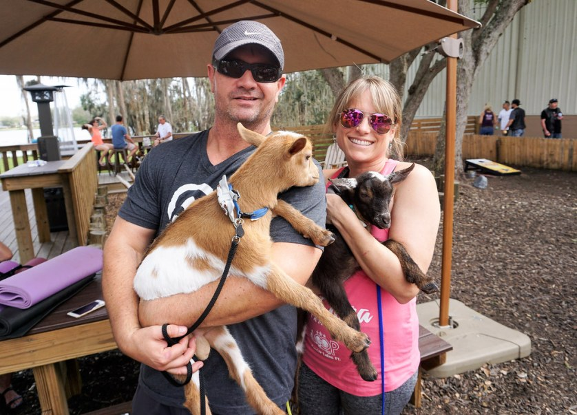 Jeff Harris and Kelly Diedring Harris, owners of Goat Yoga Tampa, hold Rudy and Totes, Nigerian Dwarf goats in training to be yoga goats. Goat Yoga Tampa at In the Loop Brewing, Land O'Lakes, Fla., Feb. 11, 2018