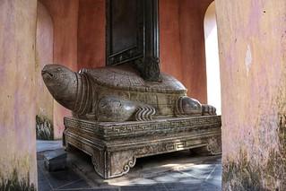 Turtle - Thien Mu Pagoda, Hue