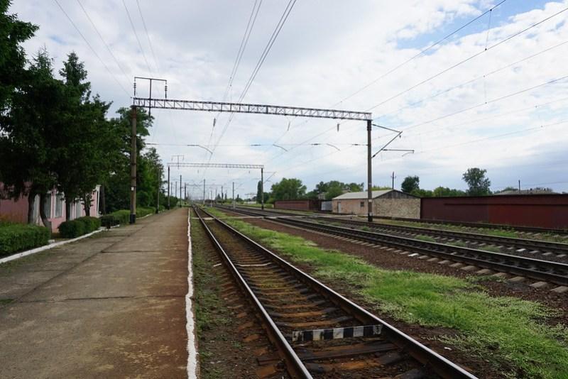 DSC03879