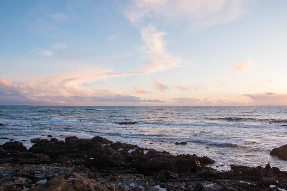 03.03. Bean Hollow State Beach