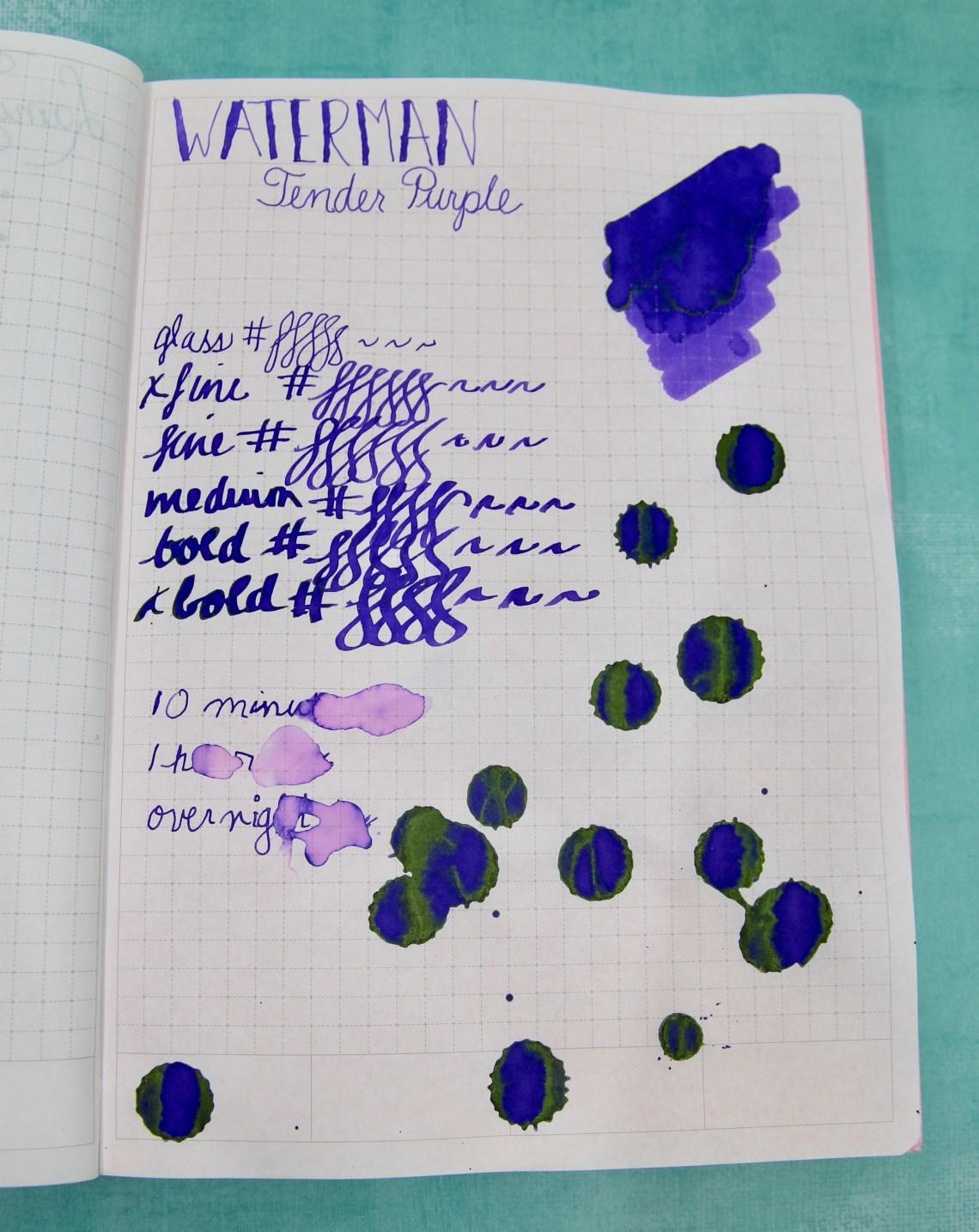 Waterman Tender Purple