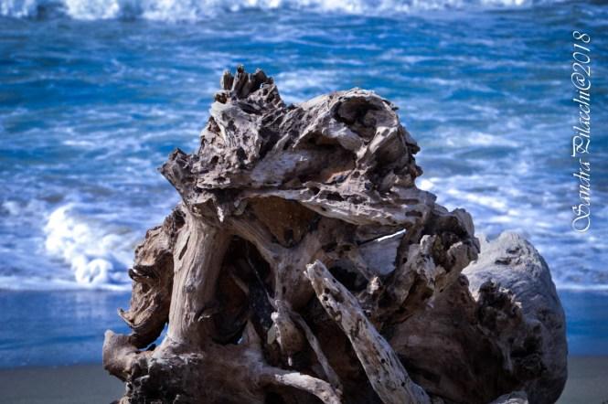 mare d'inverno legno_