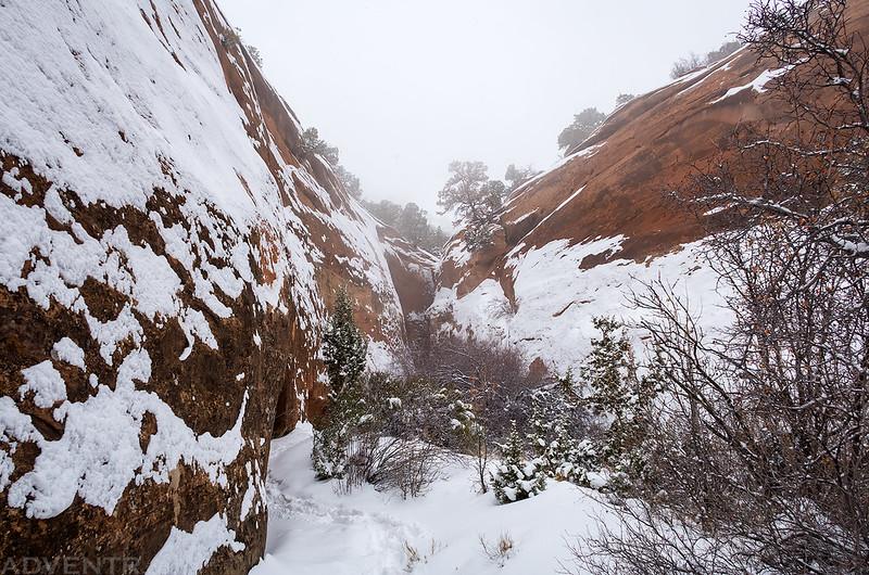 Narrowing Canyon