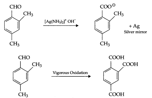 CBSE Sample Papers for Class 12 Chemistry Paper 4 Q.24.3