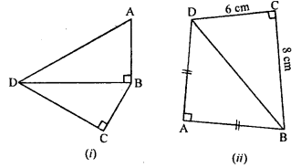 ML Aggarwal Class 9 Solutions for ICSE Maths Chapter 12 Pythagoras Theorem     14
