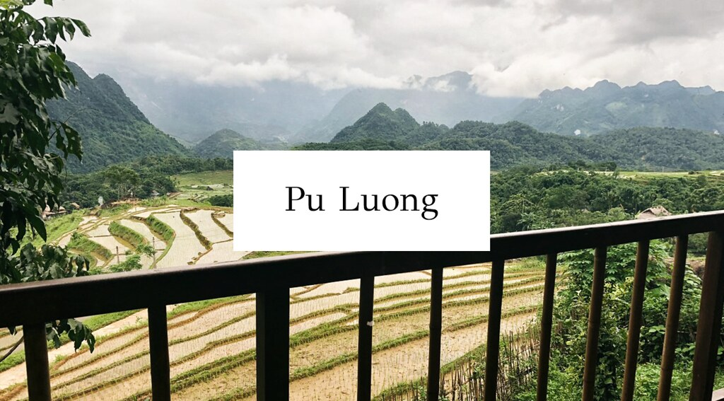 Pu luong cover