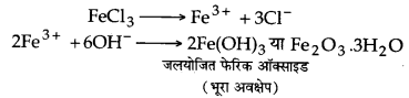 UP Board Solutions for Class 12 Chemistry Chapter 13 Amines 21