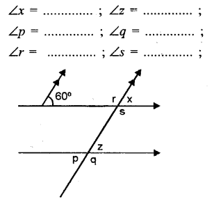 Selina Concise Mathematics Class 6 ICSE Solutions - Properties of Angles and Lines (Including Parallel Lines)-b5