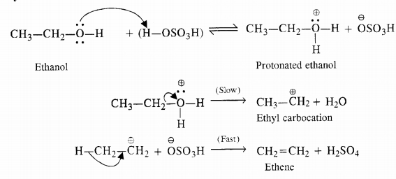 NCERT Solutions for Class 12 Chemistry Chapter 12 Aldehydes, Ketones and Carboxylic Acids E19