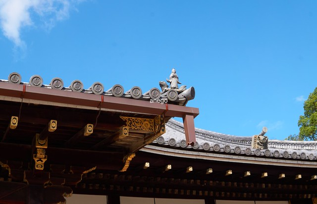 仁和寺 屋根の上