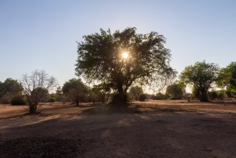 Het Lower Zambezi is een geweldig park, er zijn namelijk lekker weinig regels. Zo mag je bijv. buiten de gebaande paden rijden.