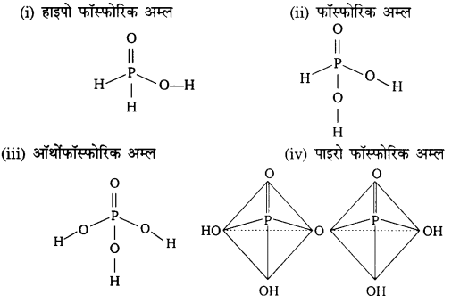 UP Board Solutions for Class 12 Chemistry Chapter 7 The p Block Elements 3Q.5