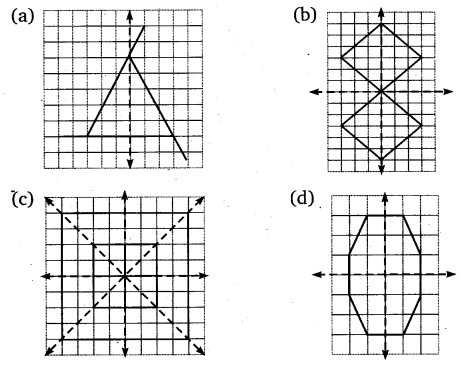 NCERT Solutions for Class 6 Maths Chapter 13 Symmetry 23