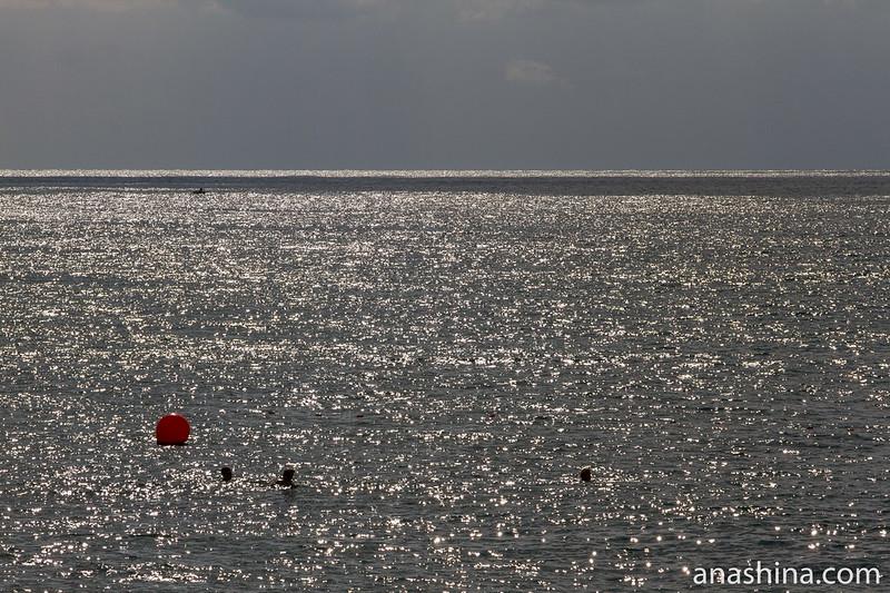 Черное море перед бурей, Ялта, Крым