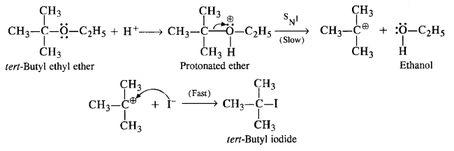 NCERT Solutions for Class 12 Chemistry Chapter 11 Alcohols, Phenols and Ehers text 12e