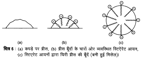 UP Board Solutions for Class 12 Chemistry Chapter 5 Surface Chemistry 2Q.18.3