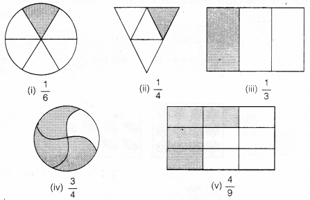 NCERT Solutions for Class 6 Maths Chapter 7 Fractions 5