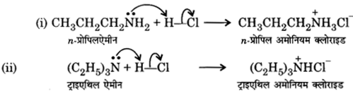 UP Board Solutions for Class 12 Chemistry Chapter 13 Amines 5
