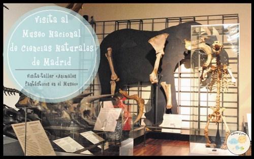 Visitar el Museo Nacional de Ciencias Naturales de Madrid
