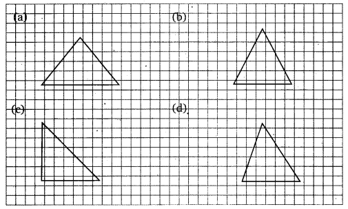 NCERT Solutions for Class 6 Maths Chapter 13 Symmetry 13