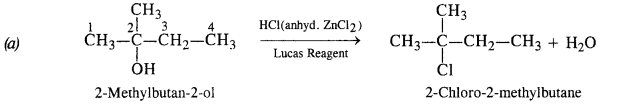 NCERT Solutions for Class 12 Chemistry Chapter 12 Aldehydes, Ketones and Carboxylic Acids t6b