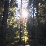 2018_12_12_7_Brücken_Aaretal_Kiesental (146)